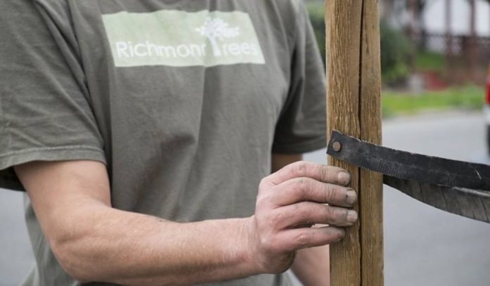Volunteers invited to tree planting event in Richmond