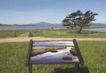 Dotson Family Marsh project wins design award