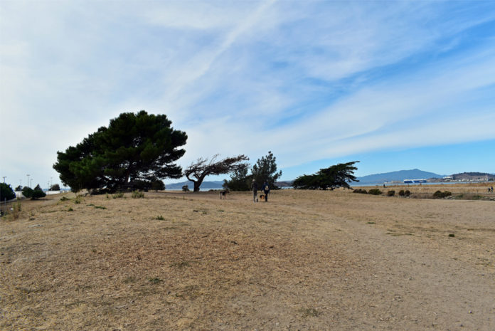 East Bay parks increase restrictions after busy weekend