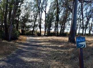 Richmond parks and open spaces won big in this election