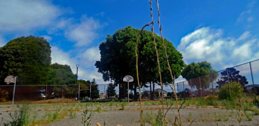 2 Richmond parks set to receive new basketball courts