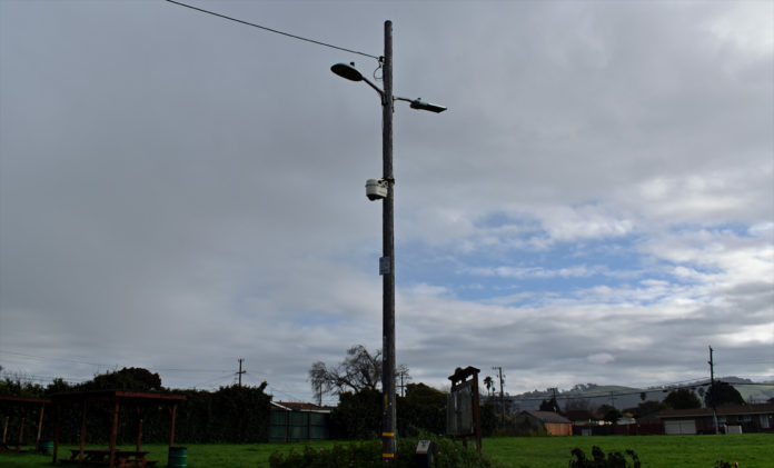 New light fixtures at Wendell Park aim to deter prostitution