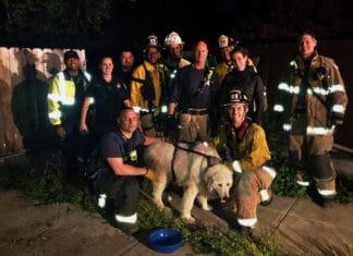 Neighbors cheer successful dog rescue in El Sobrante