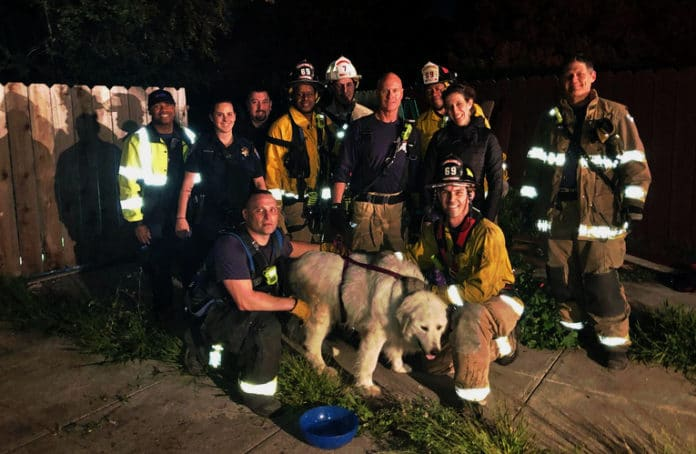 Neighbors cheer successful dog rescue in El Sobrante