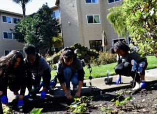 477 Salesian students, staff participate in day of community service