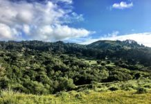 El Sobrante school gets 80-acre land donation