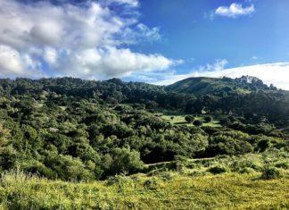 El Sobrante school gets 80-acre land donation