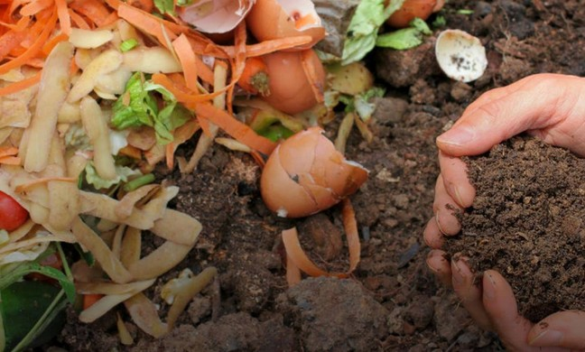 Compost giveaway 2019 fremont