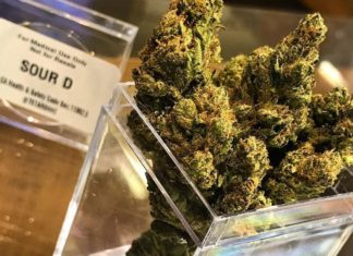 Richmond cannabis stores mellower than grocery stores