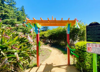 Peace Garden offers tranquil escape amid pandemic