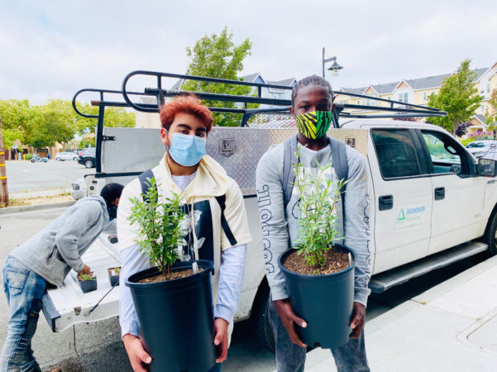 Youth ambassadors beautify Richmond's downtown while gaining real-world experience