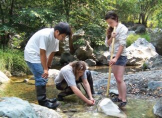 East Bay Regional Park District hiring students for nearly 400 seasonal jobs