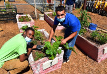 New Richmond victory garden to supply fruits, veggies to people in need