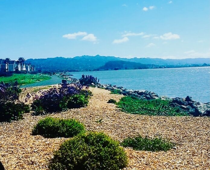 County supervisor cohosting Coastal Cleanup Day event in Richmond
