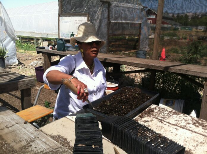 Urban Tilth plants permanent roots with North Richmond land acquisition