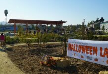 'Halloween Land' coming to Unity Park in Richmond