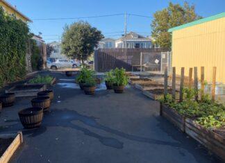 Richmond teacher fundraising to grow educational school garden